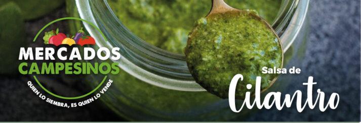 recetas-cilantro